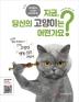지금, 당신의 고양이는 어떤가요?