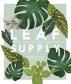 [보유]Leaf Supply
