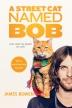 [보유]A Street Cat Named Bob