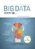 빅데이터 개론(Big Data)(양장본 HardCover)