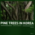 Pine Trees in Korea(Aesthetics and Symbolism)(양장본 HardCover)