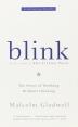 [보유]Blink