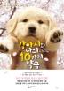 강아지와 나의 10가지 약속