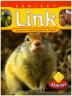 Subject Link L. 1(Starter)(CD1장포함)
