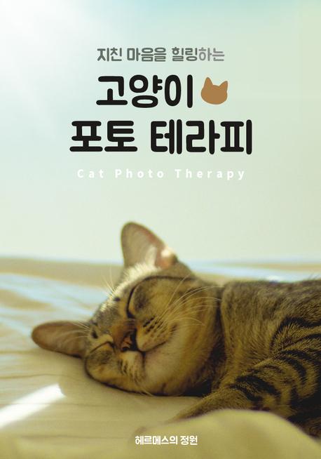 지친 마음을 힐링하는 고양이 포토 테라피