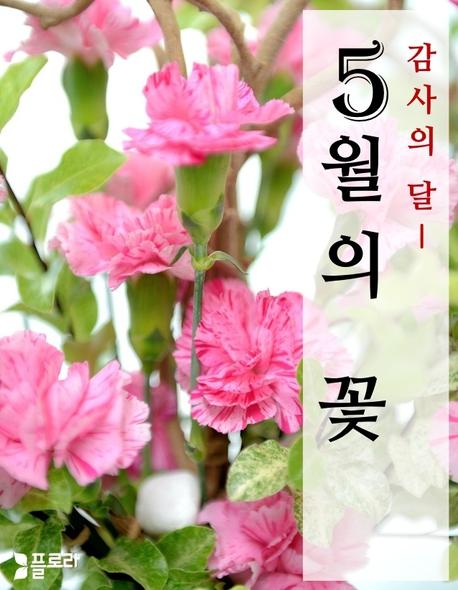 감사의 달 5월의 꽃