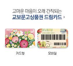 교보문고상품권 드림카드