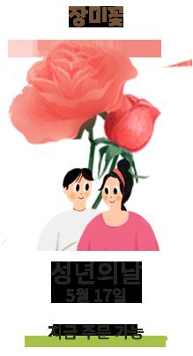 장미꽃/성년의날