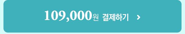 119,000원  결제하기