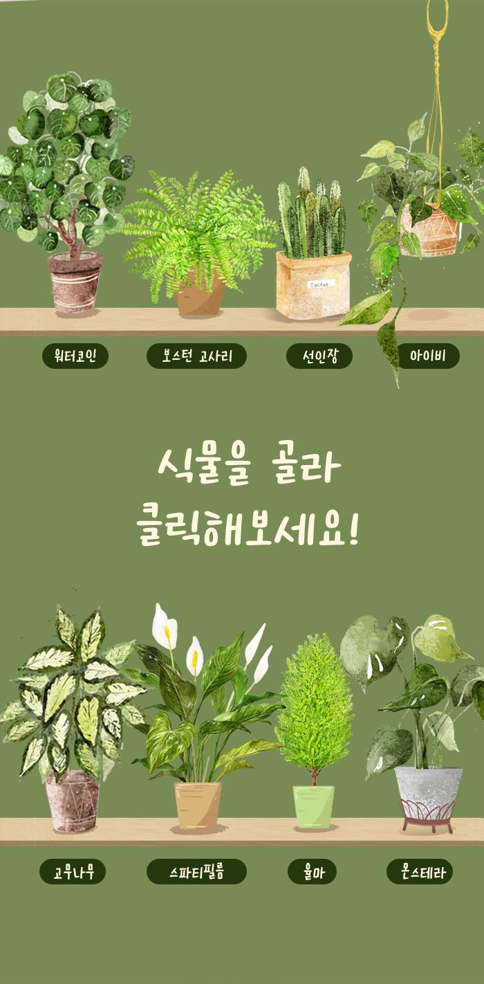 MD 추천 식물책