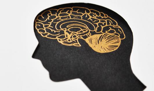 뇌를 바꿔 삶을 변화시켜라, 붓다처럼!『붓다 브레인』