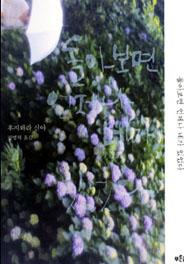 일본 청춘의 구루, 꽃 같은 이야기를 쏟아내다