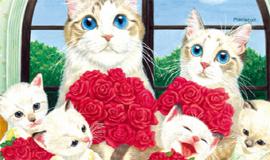 1월, 고양이 왕국에 놀러오세요