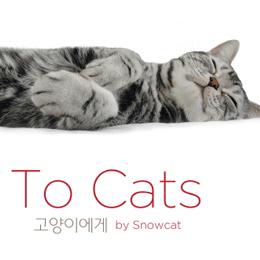 고양이는 역시 까칠한게 매력!『To Cats』