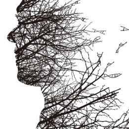 [언론이 주목한 책 3] 인간은 어떻게 이토록 특이한 얼굴을 가지게 되었나