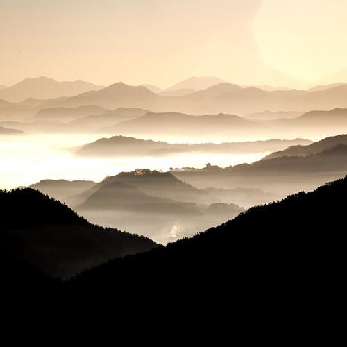 [시 읽는 나날] 27. 시인 다산, 현실을 껴안고 초월을 향해