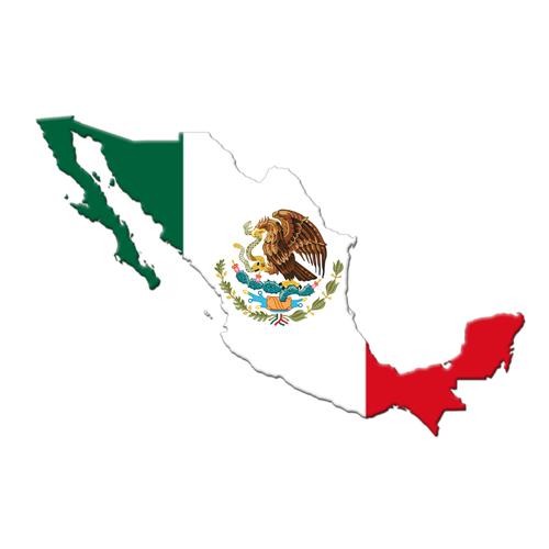 5화. 멕시코 국민화가 프리다 칼로