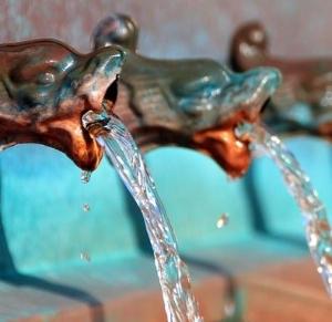 전 세계 3억명 식수 오염 노출 해마다 340만명 수인성 질병으로 '사망'