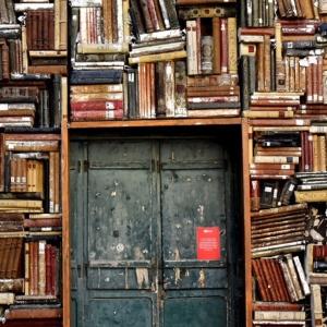 도서관에 사는 남자, 꼭 다양한 분야의 책을 읽어야 할까?