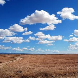 [시 읽는 나날] 24. 김춘수, 시는 구름처럼 그저 흘러갈 뿐