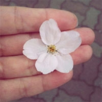 [63번째] 하루키, 그리고 봄을 기다리며