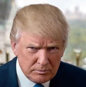 제 45대 미국 대통령 선거<br>도널드 트럼프, 백악관의 새 주인으로...