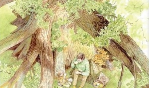 나무와 숲을 말하다 - 책을 만들고 생명을 만드는 나무와 숲