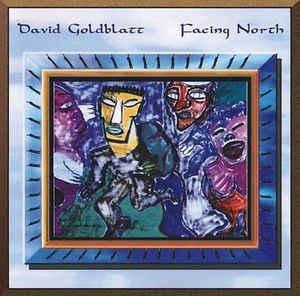 [일본반] David Goldblatt - Facing North