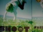 Shoot Forever : lomography