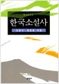 한국소설사 (개정증보판)