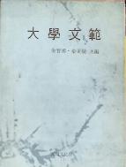 대학문범-1969년 선명문화사