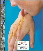 [독어원서 사진] Pipilotti Rist: Apricots Along The Streets (2001년) (Paperback)