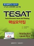 TESAT 핵심요약집(2013)(한 번에 끝내는)