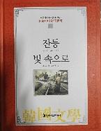 잔등 / 빛 속으로 - 논술대비 한국문학 40