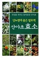 당뇨병에 좋은 발효액 산야초효소(양장본)