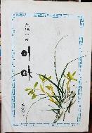 이마 -김성한 장편소설- 1975년 초판-절판된 귀한책-