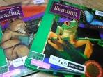 Houghton Mifflin Reading : Surprises + Treasures   [두권/미국교과서]