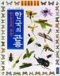 한국의 곤충(한눈으로 보는)