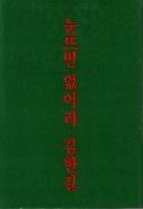 눈뜨면 없어라 : 김한길 스물아홉의 일기   (ISBN : 9788973370306)