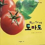 빨갛게 익어 가는 토마토