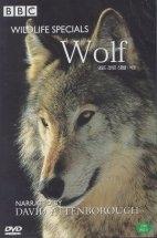 와일드 라이프 스페셜: 늑대 [WILDLIFE SPECIALS: WOLF]