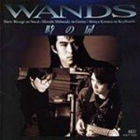 Wands / 時の扉 (수입)