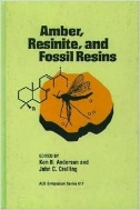 Amber, Resinite, and Fossil Resins (ISBN : 9780841233362)