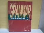 GRAMMAR ESSENCE(김영선생 대학편입 편입핵심영문법)