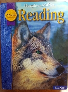 Houghton Mifflin Reading: Student Edition Level 4 Traditions 2008 (Hardcover)