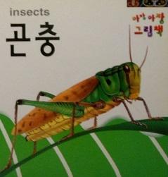 아장아장 그림책 insects 곤충