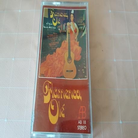 (중고TAPE) Flamenco ole'