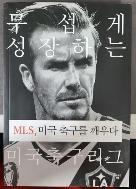 MLS  미국 축구를 깨우다