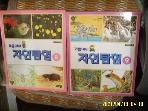 교원 편집부 2권/ 꾀돌이의 자연탐험 8.9 곤충 식물 동물. 지구 새 정글 외 -테잎없음. 꼭상세란참조