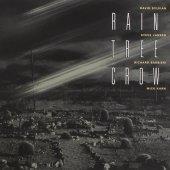 Rain Tree Crow / Rain Tree Crow (수입)